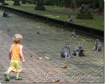 MonkeyDeeds