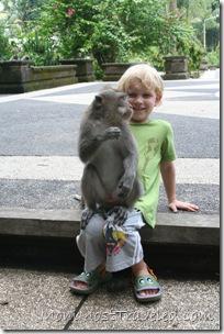 MonkeyJo