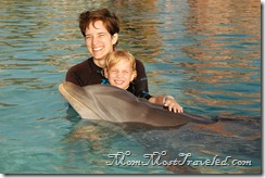 DolphinHug