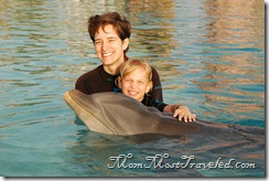 DolphinHug2